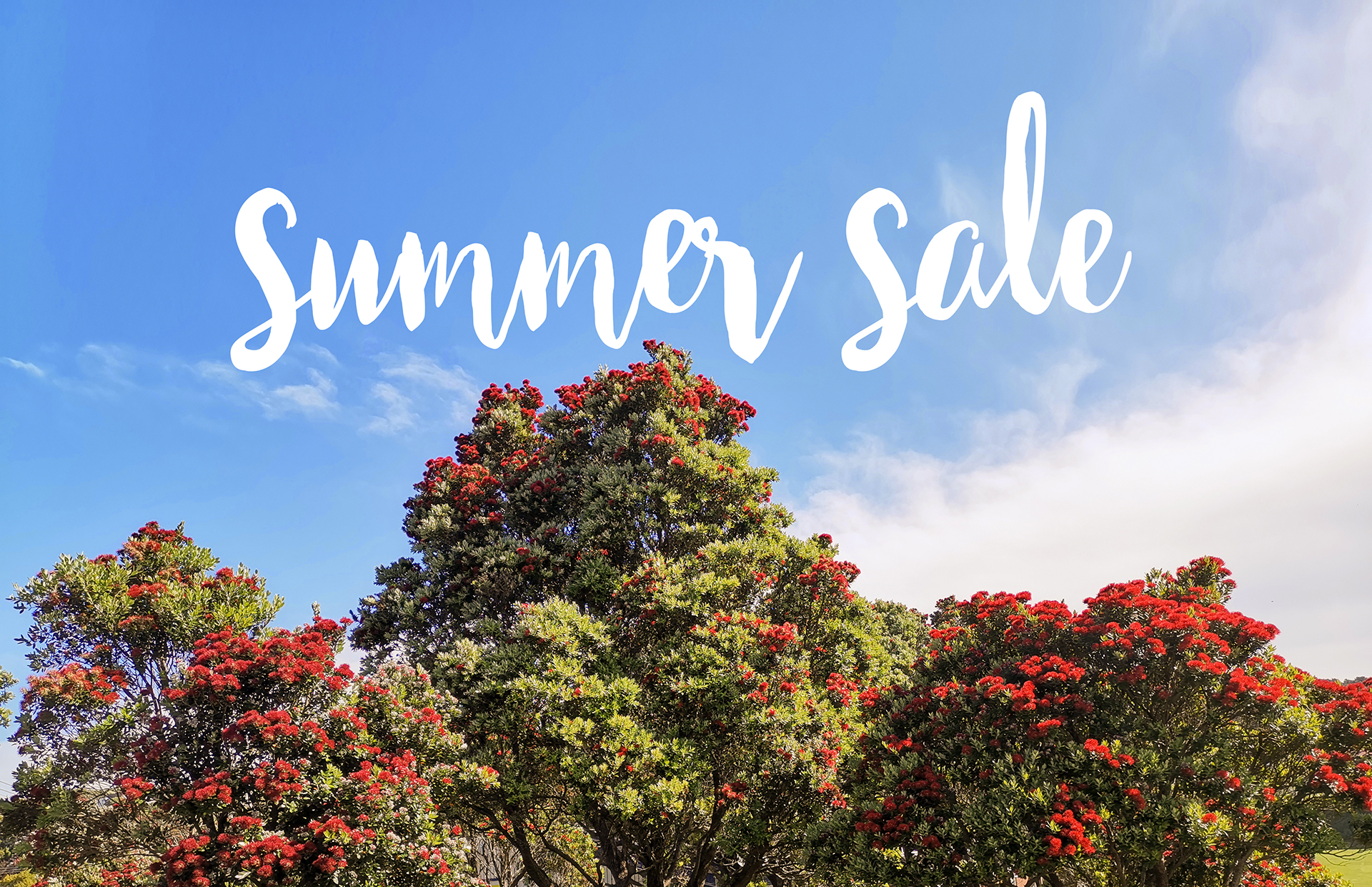 Get 20% Off with our Summer Sale