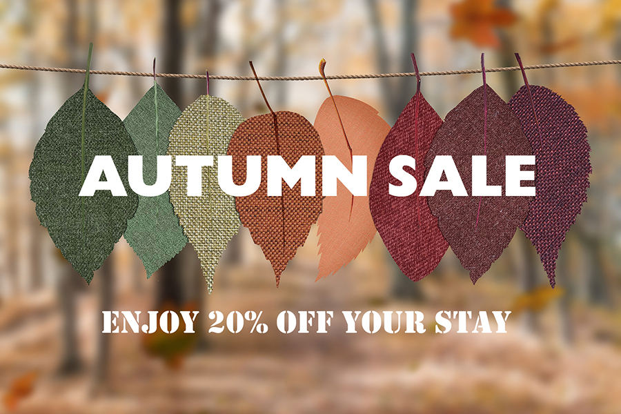 Autumn Sale | 20% Off with The Setup